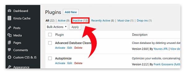 Remove Unused Plugins WordPress Security